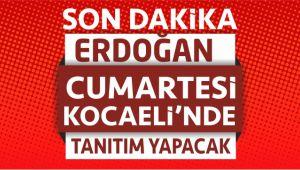 Erdoğan Cumartesi Adayları Tanıtacak