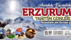 Erzurum Kocaeli'ye taşınıyor