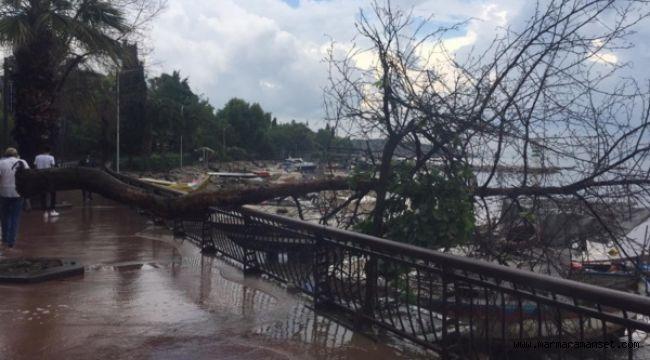 Darıca'da sağanak sele yol açtı 1 kişi öldü