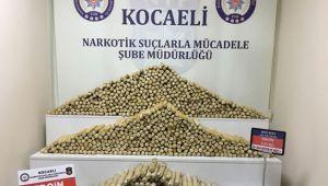 Kocaeli'nin Bir Aylık Uyuşturucu Bilançosu Açıklandı!!!