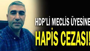 HDP'li meclis üyesine hapis cezası!