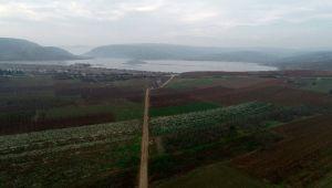 Bursa, Yalova ve Kocaeli'de 123 bin dekar arazi tapulaştırıldı