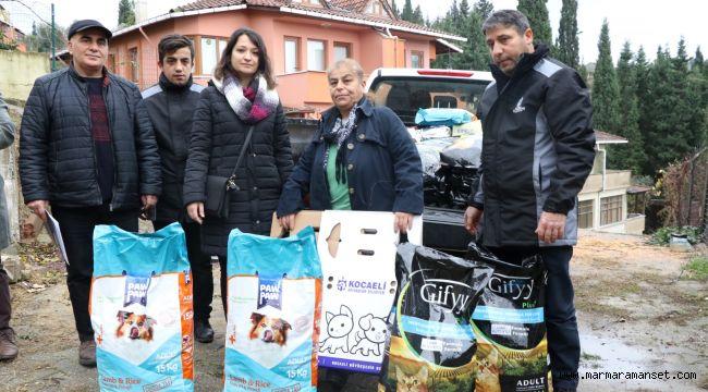 Büyükşehir'den köpeklere mama desteği