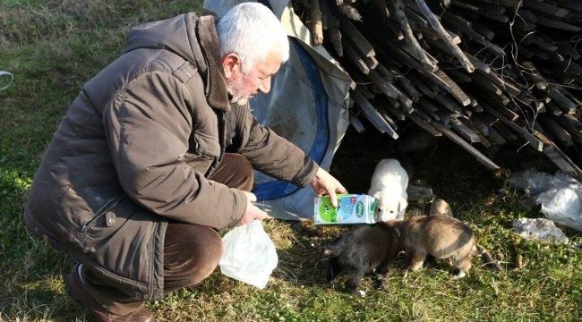 yağmur suyu kanalına sıkışan köpeği itfaiye ekipleri kurtardı