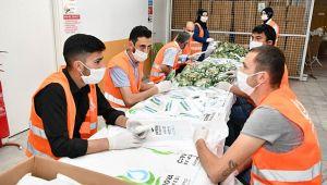 Çayırova'da 45 bin haneye maske ve çikolata