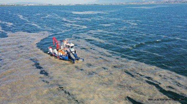 Körfez temizleniyor